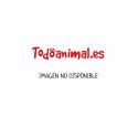Termómetros para acuarios